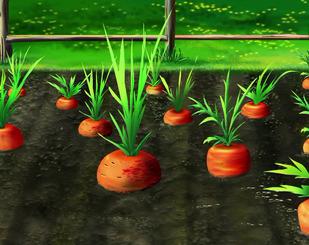 Серія 22. Моркв'яне поле